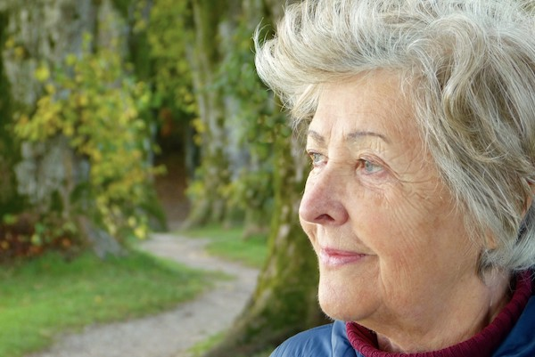 what is the difference between dementia and Alzheimers